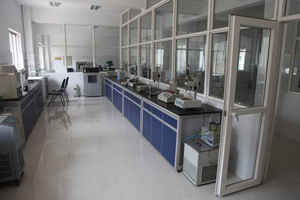 Dagang asphalt material laboratory (the first phase) puts into use
